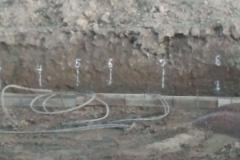 loop field 3